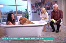 19 moments that prove daytime telly is the weirdest place of all