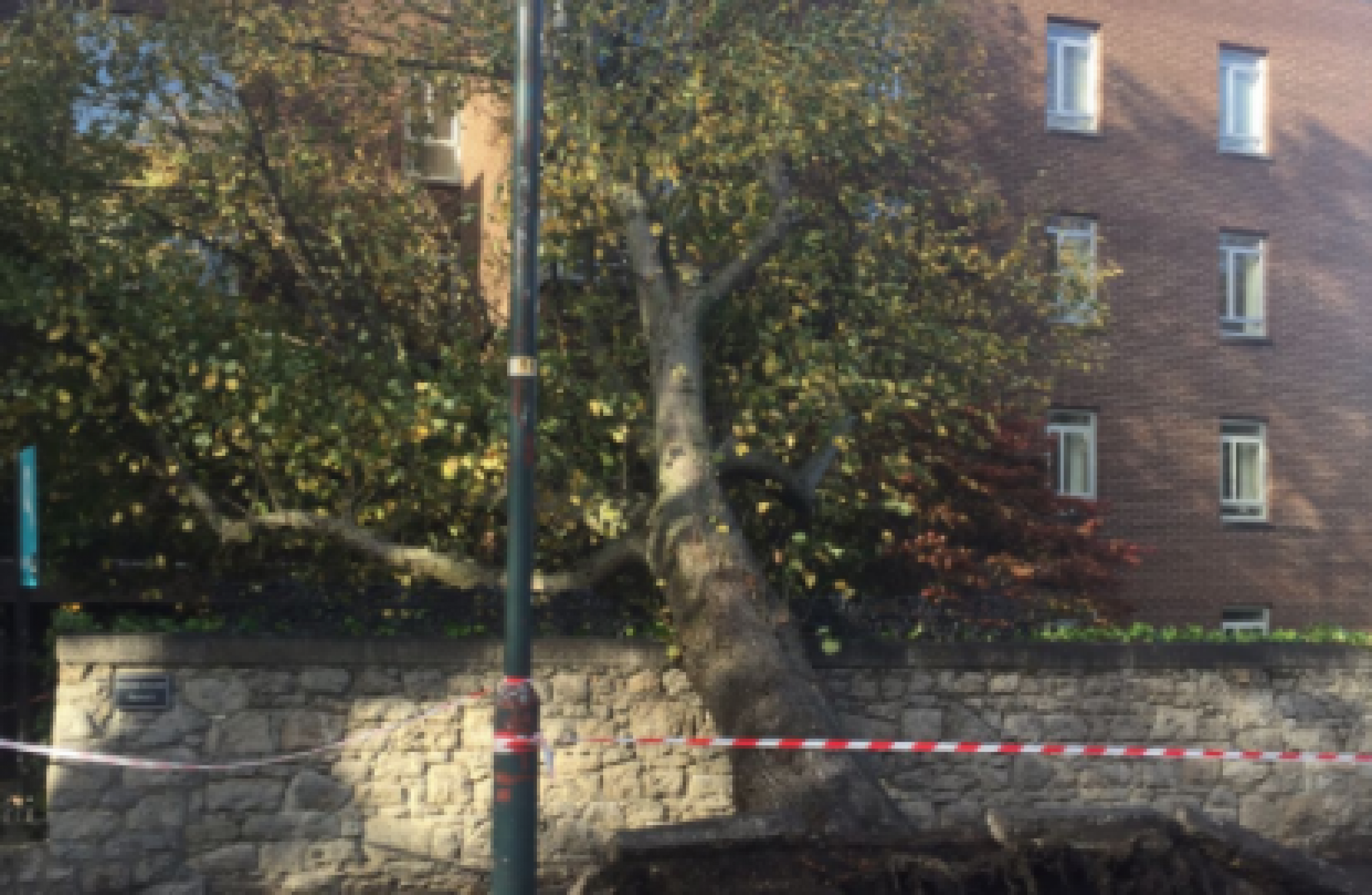 Here\u0027s what to do if your property has been damaged by Storm Ophelia