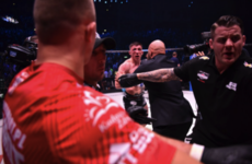 Parke punched by opponent's cornerman after controversial ending to Dublin bout
