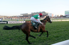 Fayonagh, last season's Champion Bumper winner, suffers fatal injury