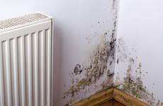 Child who allegedly developed acute bronchitis from damp and mould at former home awarded €20,000 damages