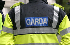 Gardaí urge locals to keep an eye out for discarded clothing after aggravated burglary