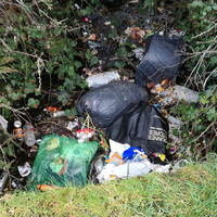 Residents trying to reclaim Dublin park after intimidation, drug dealing and burnt out cars