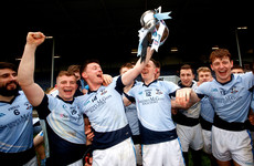 From torn cruciate in club football game to Munster hurling champion in the space of 15 months