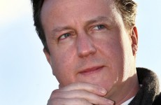 Did David Cameron ride the ex-police horse that was lent to Rebekah Brooks?