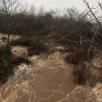 Families evacuated in Laois as flooding spreads across the county