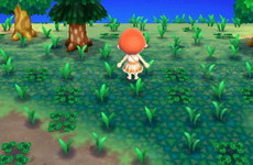 16 memories you'll have if you played Animal Crossing growing up
