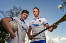 Here's the new jersey Waterford's hurlers and footballers will wear in 2018