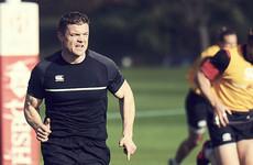 O'Driscoll hopes defensive improvement can lift Irish World Cup hopes