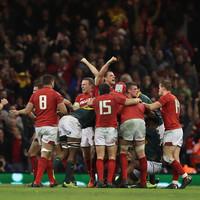 Wales survive Springboks comeback as Parkes stars on debut