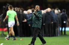 Coetzee passionately defends his position as Springboks head coach