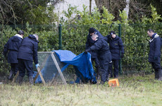Dunboyne murder investigation: Post-mortem shows man died from three gunshot wounds