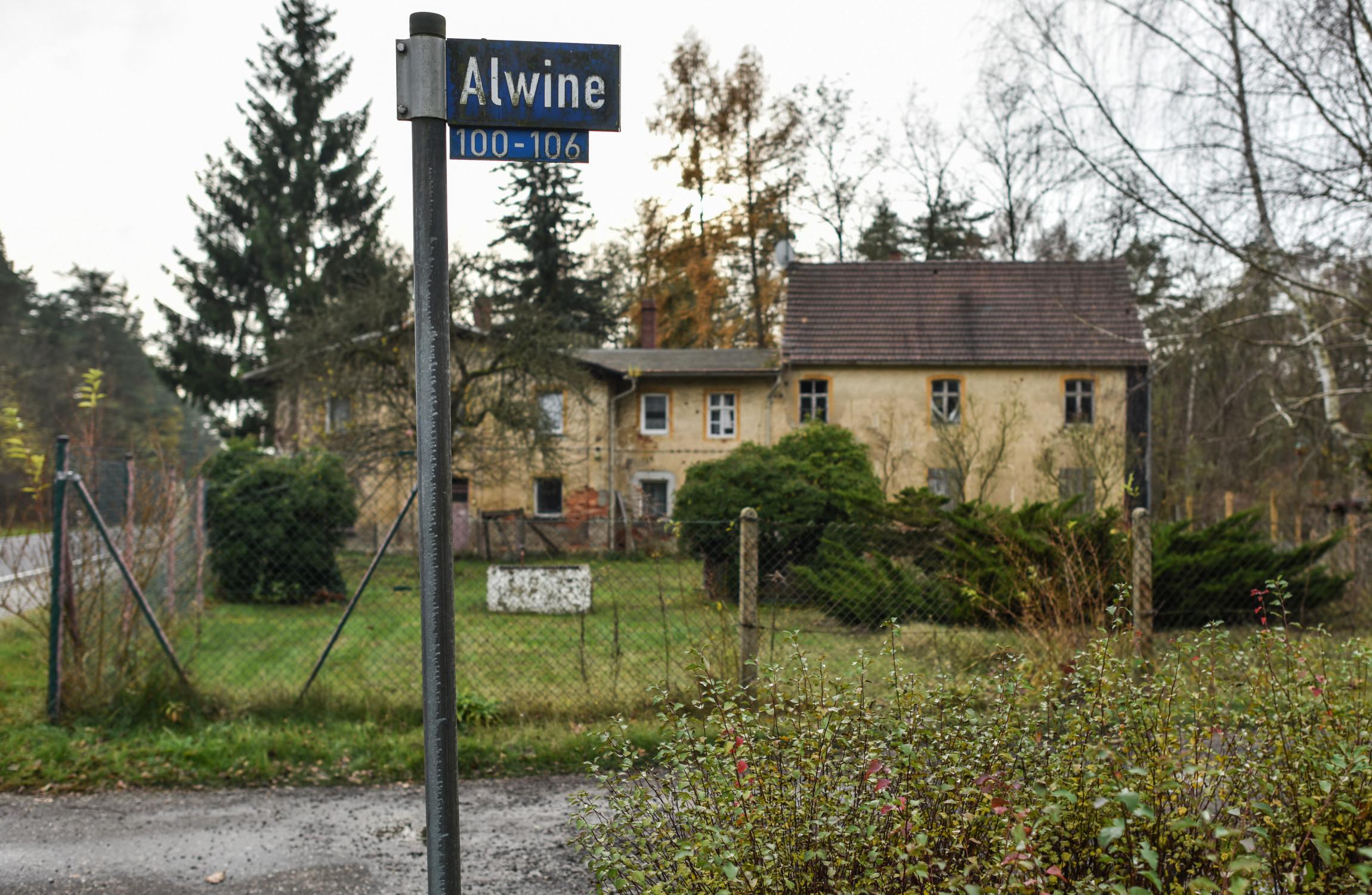 Resultado de imagen para Alwine