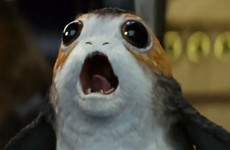 Here's why porgs were a necessary addition to Skellig Michael in Star Wars: The Last Jedi