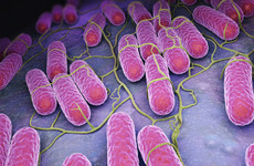 400 new cases found of Irish patients with superbug that is resistant to antibiotics