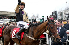 Tragedy at Leopardstown as Cheltenham champion Nichols Canyon suffers fatal fall