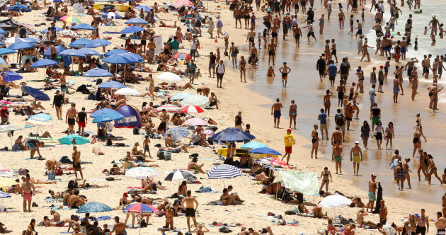 Power cuts and fire bans as Sydney swelters in hottest temperatures since 1939