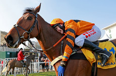 'We were going for the Gold Cup, we're gutted' - Thistlecrack to miss Cheltenham
