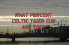 What Percent Celtic Tiger Cub Are You?