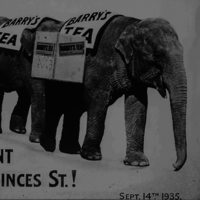 From 1893 to 1995 � these iconic ads help tell the history of business in Ireland