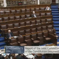 As it happened: TDs share their views on Ireland's abortion laws