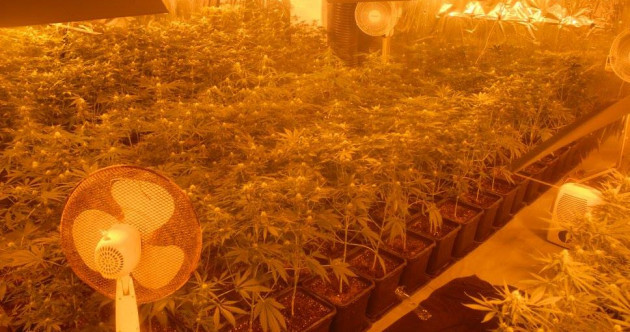 Three men arrested after gardaí uncover cannabis worth €360,000 in converted garage