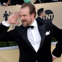 David Harbour really wanted to dance with penguins, so Twitter helped him out