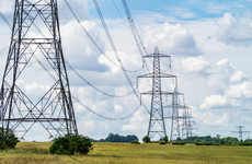 Controversial electricity pylon plan takes big leap forward but some people aren't happy