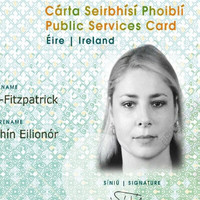 'We are trying to sound the alarm' - committee hears Public Services Card is a legal ticking time bomb