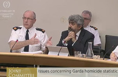 'How in God's name could that be called a comprehensive analysis?': Garda homicide figures probed