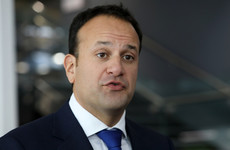 'D. R. A. F. T - not the final draft' - Taoiseach spells out his position in row with cross-party TDs