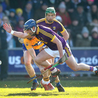 Davy Fitzgerald enjoys win over his native Clare after dominant Wexford second-half