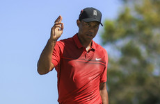 Mind the goose! Tiger Woods collects birdies in more ways than one at Honda Classic