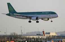 Aer Lingus passengers will have to pay up to €60 for the return of lost items