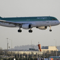 Aer Lingus passengers will have to pay up to �60 for the return of lost items