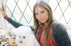 Barbra Streisand has revealed that she cloned her beloved dog twice ...it's The Dredge