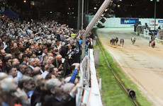 A year after it closed for 22 weeks, Shelbourne Park is getting a multimillion-euro overhaul