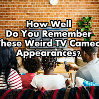How Well Do You Remember These Weird TV Cameo Appearances?