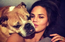 Chrissy Teigen's beloved dog Puddy just passed away and she shared a lovely tribute to him on Instagram