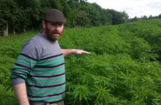 This sheep farmer is leading the push to set up Ireland's first hemp co-op