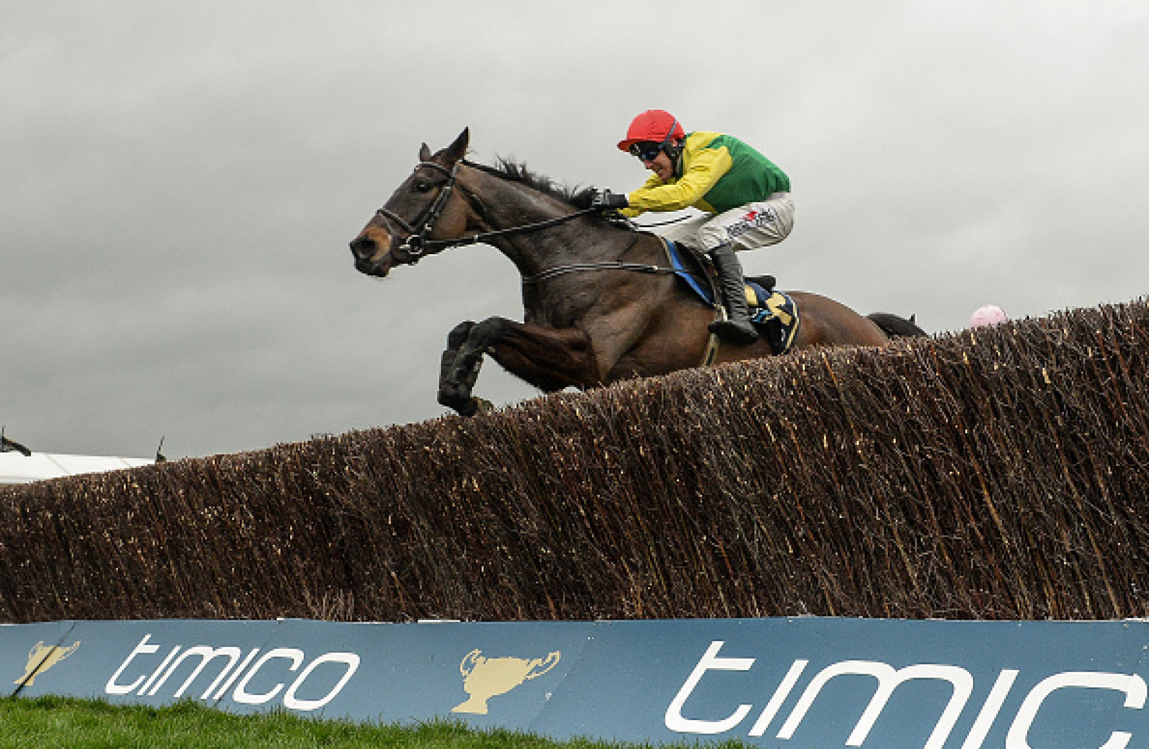 Sizing John ruled out of Timico Cheltenham Gold Cup with injury