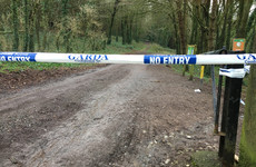 Items discovered in Tina Satchwell search site sent for forensic testing