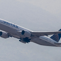 'A tragic accident': Dog dies in United Airlines overhead bin