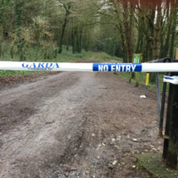 Gardaí complete search of woodland area in Tina Satchwell investigation