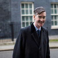 'I am not a fish-thrower': Rees-Mogg denies involvement in fish-throwing Brexit protest
