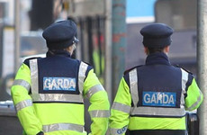 Homicides increase by nearly 20% after review finds gardaí inaccurately recorded all types of crime