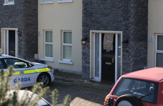 Tony Golden murder: Gardaí misclassified victim's domestic violence incidents