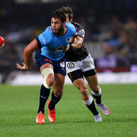 Bulls centre Swanepoel links up with Munster ahead of short-term loan deal