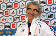 Ex-France boss Raymond Domenech says he's interested in managing Ireland