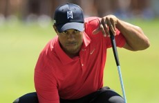 Tiger back in the swing as G-Mac denied